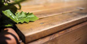 مشخصات چوب ترمو آلتن