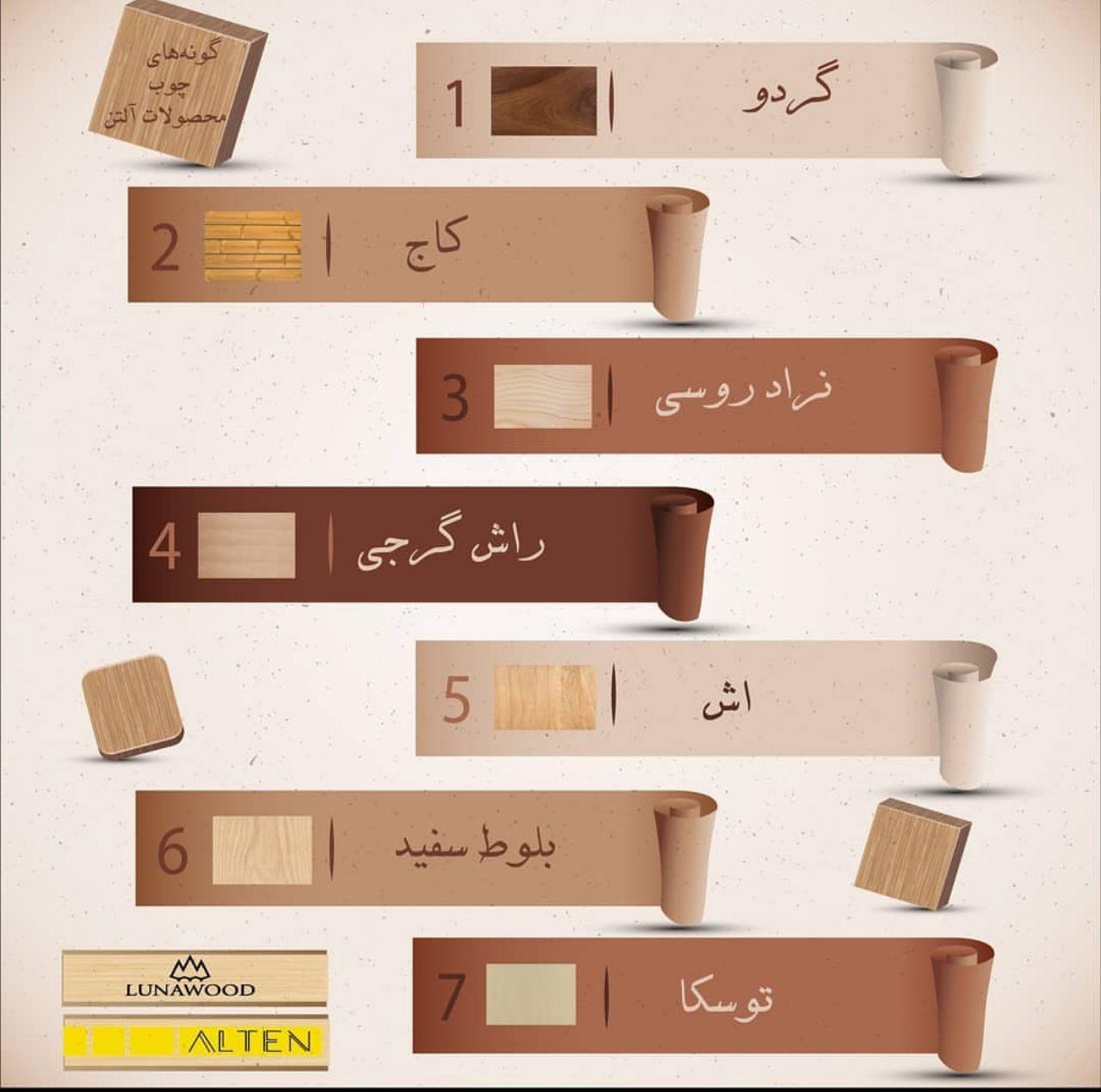 اینفوگرافی انواع چوب